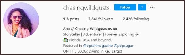 ChasingWildGusts Instagram page bio
